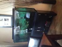 Fish tank and stand 55 gallon