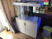 Ehiem Incpiria 300 Fish Tank