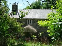 4 bed detached house with 2.5 acres secluded Dolgellau/Barmouth