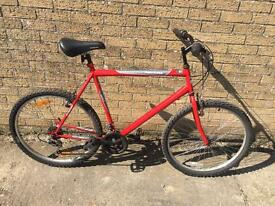 Gents Mountain Bike. Serviced, Good Condition, Free D-Lock, Drlivery