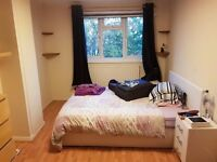 Double room for rent in KT1 - All bills included, all female household. Also smaller room for £390