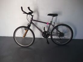 Raleigh Activator Mountain Bike - Youth