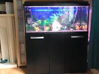 160 litre fish tank