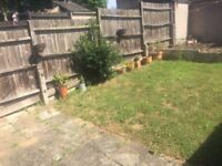 Mutual exchange -downsizing 3 bed to one bed