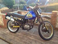 Suzuki DR 125 Trail Bike Scrambler New Mot Fantastic Learner Legal Bike
