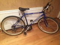 Apollo mountain bike with 15 gears