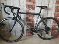Claud Butler Trieste. 56cm Ladies Road Racing Bike RRP £450 Great Condition Carbon Fork