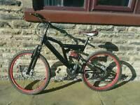 Dunlop Sports Junior Mountain Bike