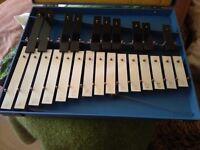 xylophone in case Glockenspiel in case