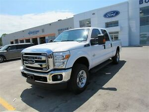 2016 Ford F-250 FORD EMPLOYEE PRICING! SD XLT 4X4 CREW CAB REAR