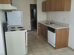 1 Bdrm  w/ Balcony, Dishwasher & Elevator in Adult Bldg~Kirkwood