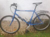 Urban/hybrid Trek bike
