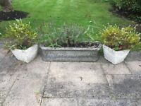 STONE GARDEN CONTAINERS / PLANTER