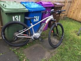 Electric mountain bike (medium)