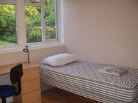 3 Doubles and 1 single room available in a student house share in Canterbury