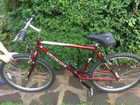 Mans bicycle 15 Speed