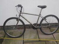 raleigh mountain bike 16.5 inch frame 15 gears working