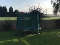 Free trampoline (collect)