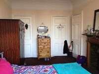 Looking for a flatmate - Spacious Double Room in Bruntsfield/Fountainbridge/Polwarth area