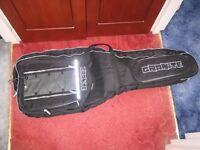 Granite guitar or bass gig bag/case