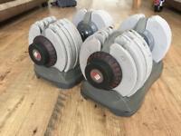 Bodymax adjustable dumbbells 32.5kg