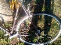 vintage race-bike peugeot