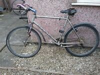 Marin mountain bike, needs work or for spares