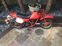 Honda QR KIDS 50cc quad bike