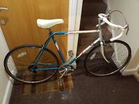 Apollo racer Bike with 28 wheel size and large frame
