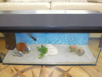 Clear-seal 3ft Fish Tank