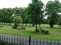 2 BED FLAT LOWER GROUND FLOOR FLAT IN BIRKENHEAD PARK - Suit experienced maintenance worker.