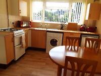 1 bedroom in Victoria Park, Newport, Shropshire, TF10