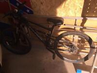 Carrera titan bike