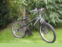 boys girls x rated 24 in wheel gripshift gears,12 in frame,beautiful condition