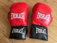 Junior Everlast boxing gloves brand new
