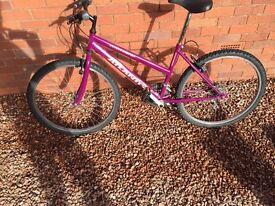 pink teenager/adult bike