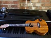 LUNA UKULELE, GREAT CONDITION. DELIVERY IN MELTON AREA OR FUTHER AFIELD FOR PETROL