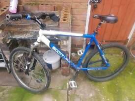 scott moutian bike