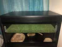 Reptile vivarium QUICK SALE !