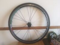 Bianchi Reperto Corse rear wheel w race weight Contiental tyre and Vittoria innter tube