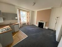 Spacious and bright one bedroom flat in Brighton, open plan living room and kitchen, available Sept