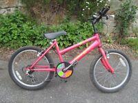 "Raleigh d-lite girl's bike pink 20"" wheels"