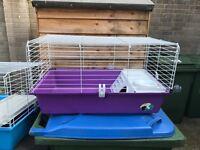 Guinea pig or rabbit hutch