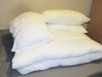 Queen size duvet and 4 pillows, free on collection