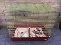 Large parrot/parakeet cage bargain £35