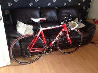Focus Cayo 105 Full carbon fibre road bike for sale