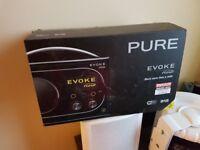 Pure Evoke Flow DAB+ digital radio & wifi streaming.