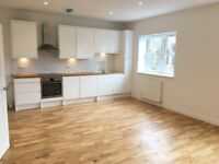 Luxury large 1 bedroom flat with share of garden, off-street parking, walking distance to Station
