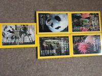 Collectible assortment of National Geographic magazines