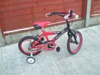 Childs Two Wheeled bike